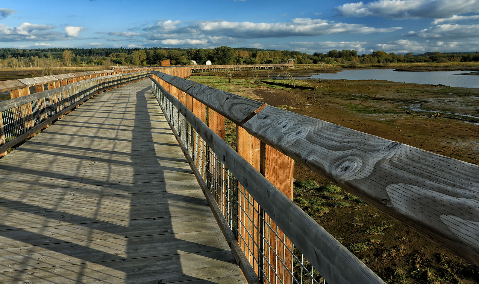 NWR-1494-1NS Boardwalk over the Nisqually